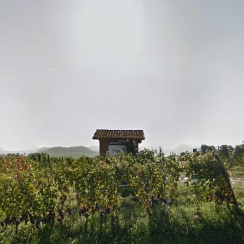 Ciabot Muscatel Borgogno