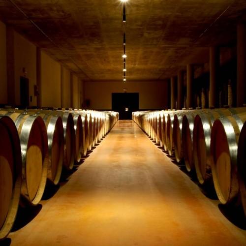 """Museo """"Ratti"""" dei vini di Alba"""