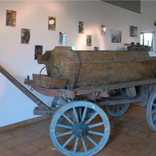 Museo della Viticoltura