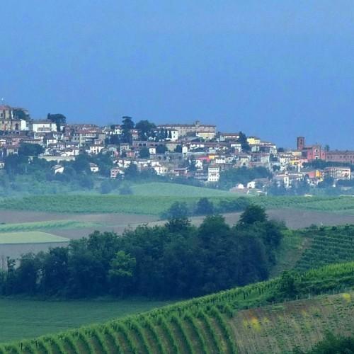 Resti del Castello di Vignale Monferrato
