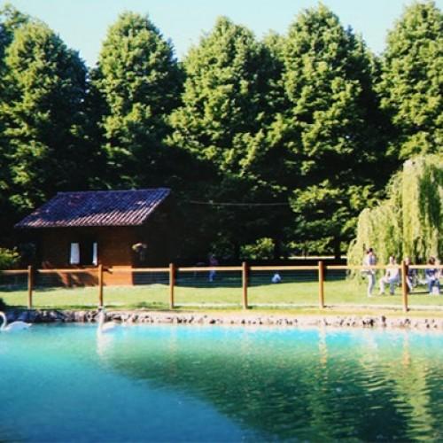 Parco di cascina Maran