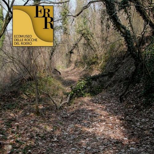Sentiero del Tartufo - Montà d'Alba