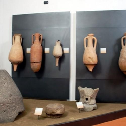 """Museo Civico Archeologico e di Scienze Naturali """"F. Eusebio"""""""