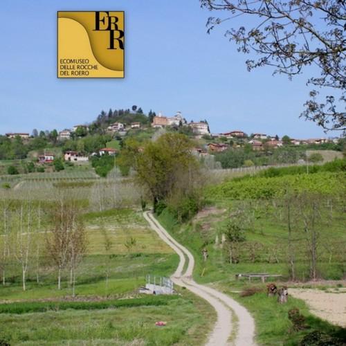 Sentiero dell'Acino - Guarene, Castagnito