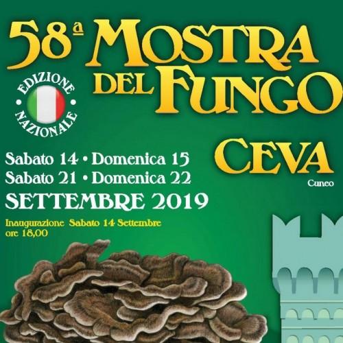 58^ MOSTRA MERCATO NAZIONALE DEL FUNGO