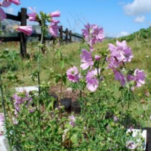 Riserva Naturale delle Sorgenti del Belbo